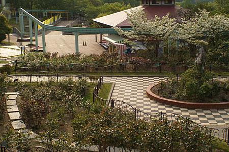 東山植物園2-6