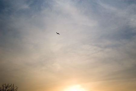 牧野ヶ池緑地-3