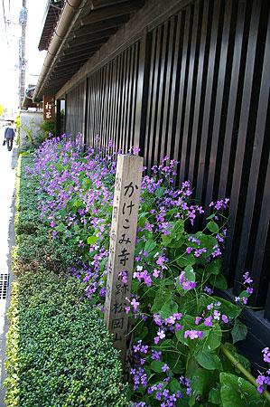 東慶寺-6