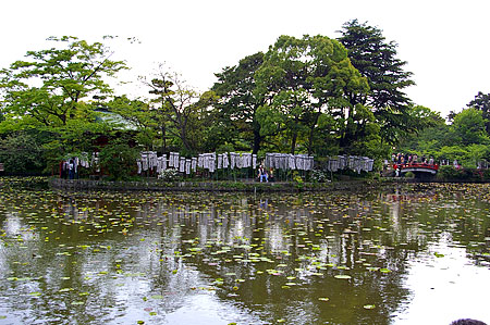 鶴岡八幡宮-6