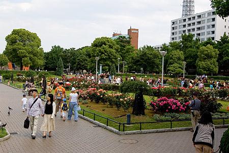 山下公園-3