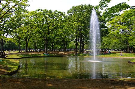 代々木公園風景-4
