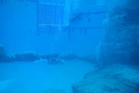 水の中の世界-8