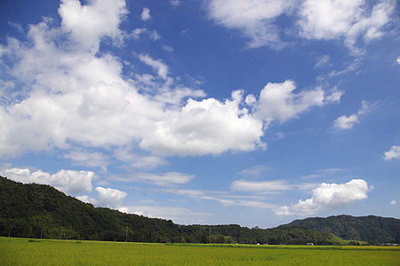田舎の夏風景-1