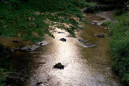 岩屋堂水風景-8