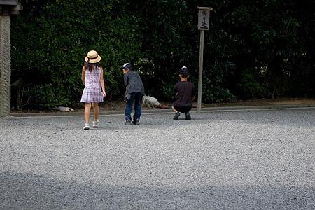 伊勢神宮風景-6