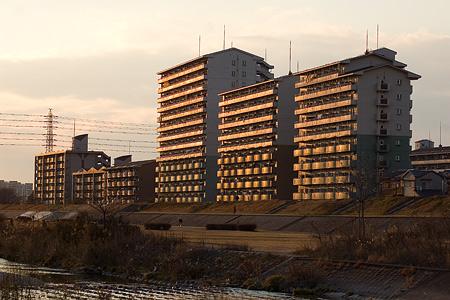 矢田川風景-11