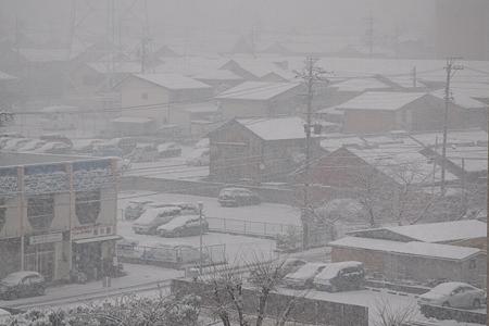 雪の名古屋-4