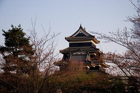 松本城-5