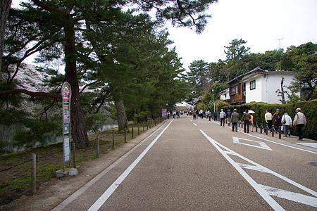 彦根城桜-2