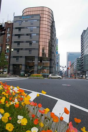 早朝東京-2