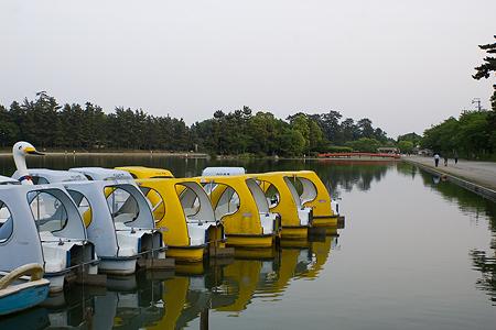 天王川公園周辺-2