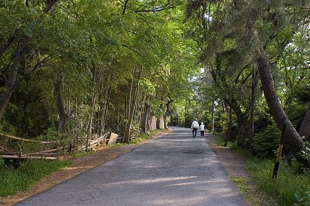 天王川公園周辺-3