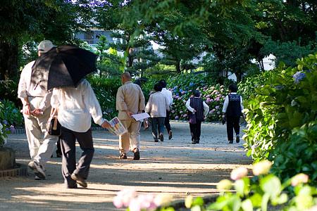 性海寺紫陽花見物の人たち