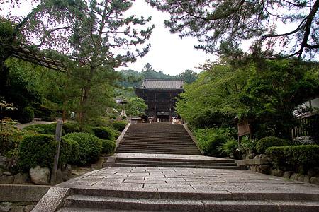 長谷寺参道から仁王門を見る