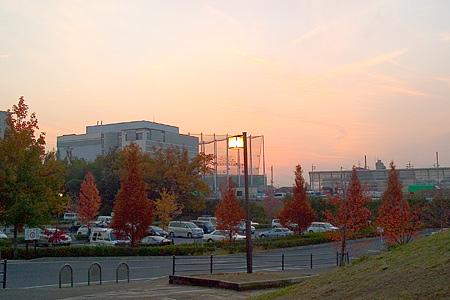 牧野ヶ池駐車場の紅葉