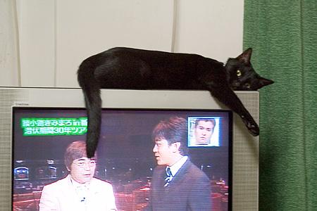 テレビの上のアイ