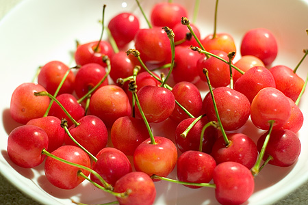 桜桃の季節