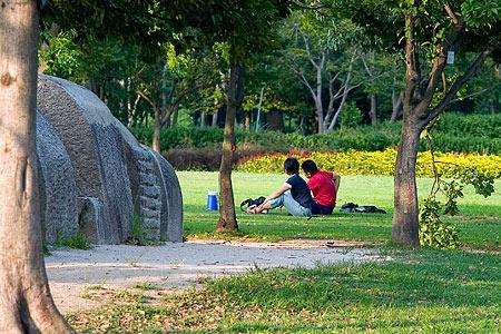 芝生の若夫婦