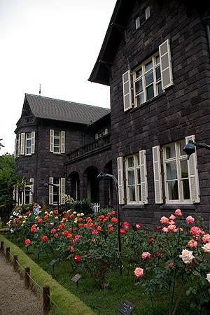 旧古河庭園のバラ-7