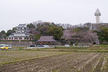 尾張旭の桜