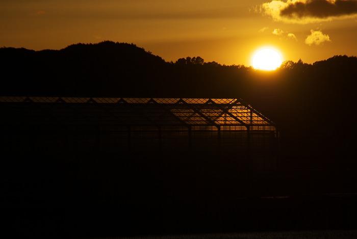 田んぼの中の夕日