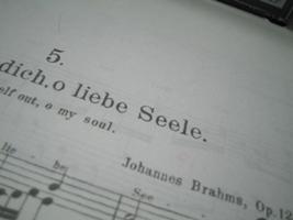 ブラームスの曲、普通に教会のオルガンで鳴らしてみた♪