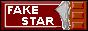 『FAKE STAR 』様