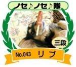 ノセノセ三段